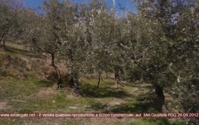 Spello (PG) Localita' Collepino