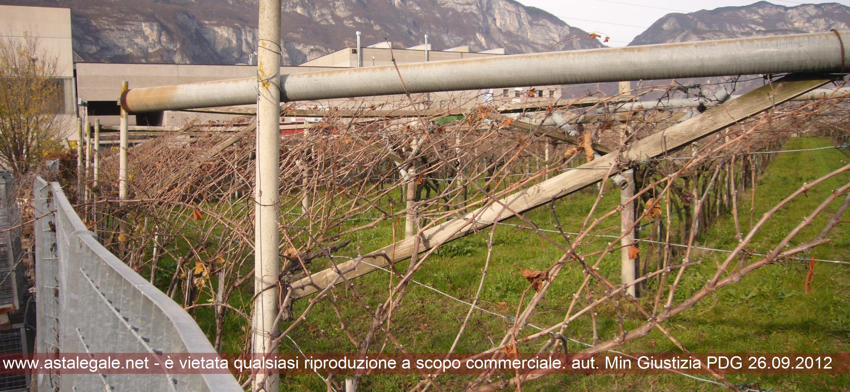 Trento (TN) Localita' Spini di Gardolo 8