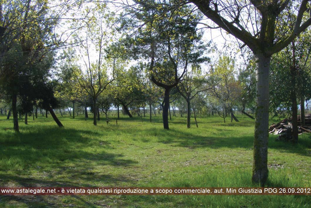 Cagnano Varano (FG) Contrada Pagliai Combattenti (località Isola di Varano)