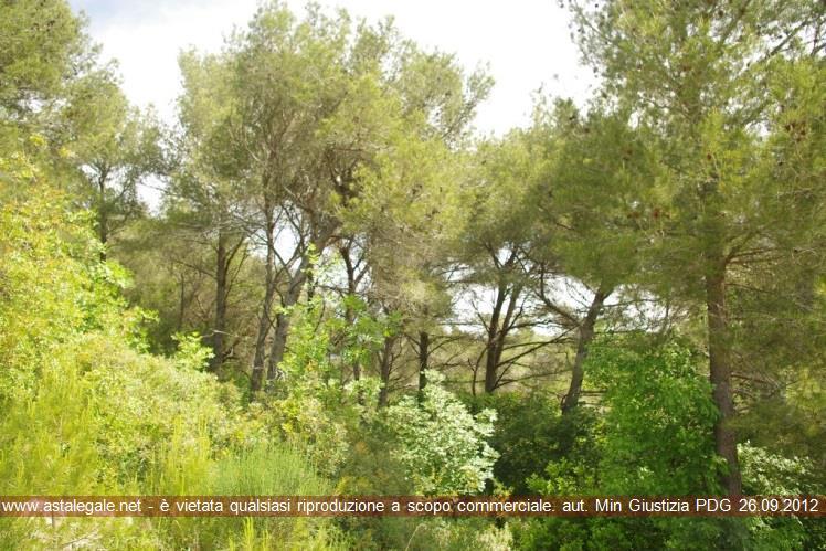 Albenga (SV) Frazione Bastia - Loc. Arveglio