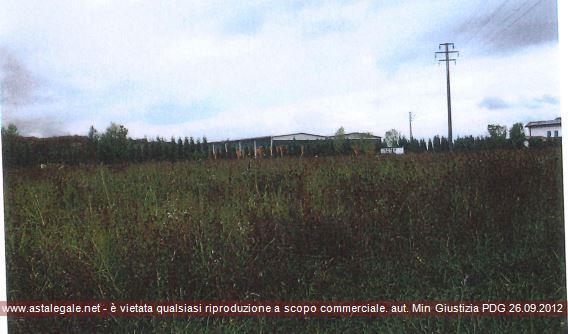 Casalmaggiore (CR) Localita' Agoiolo - Strada Provinciale n. 85 Km 34 + 150