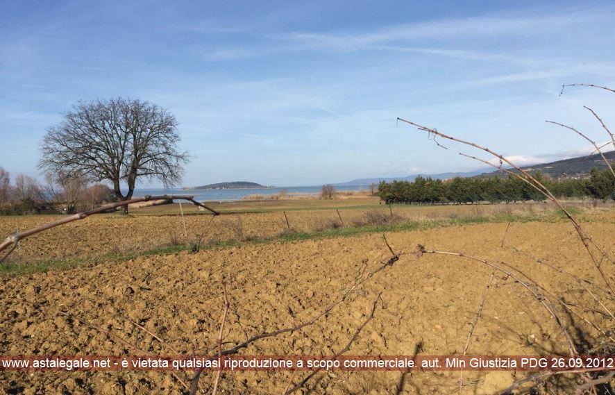Magione (PG) Zona prospiciente le rive del Lago Trasimeno