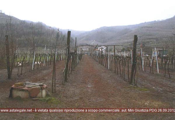 Soave (VR) Localita' Moscatello
