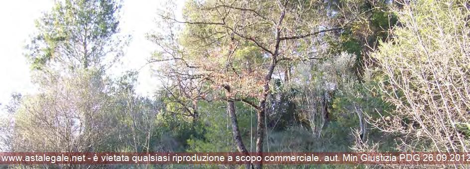 Spoleto (PG) Frazione Massenano, loc. Arezzo
