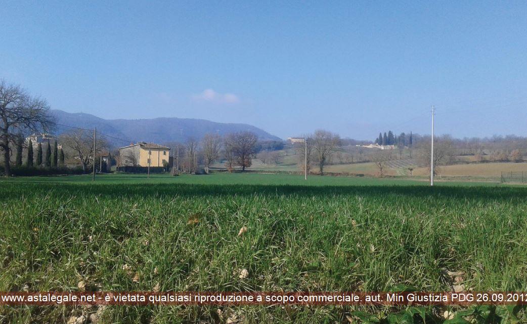 Todi (PG) Localita' Pian di S. Martino