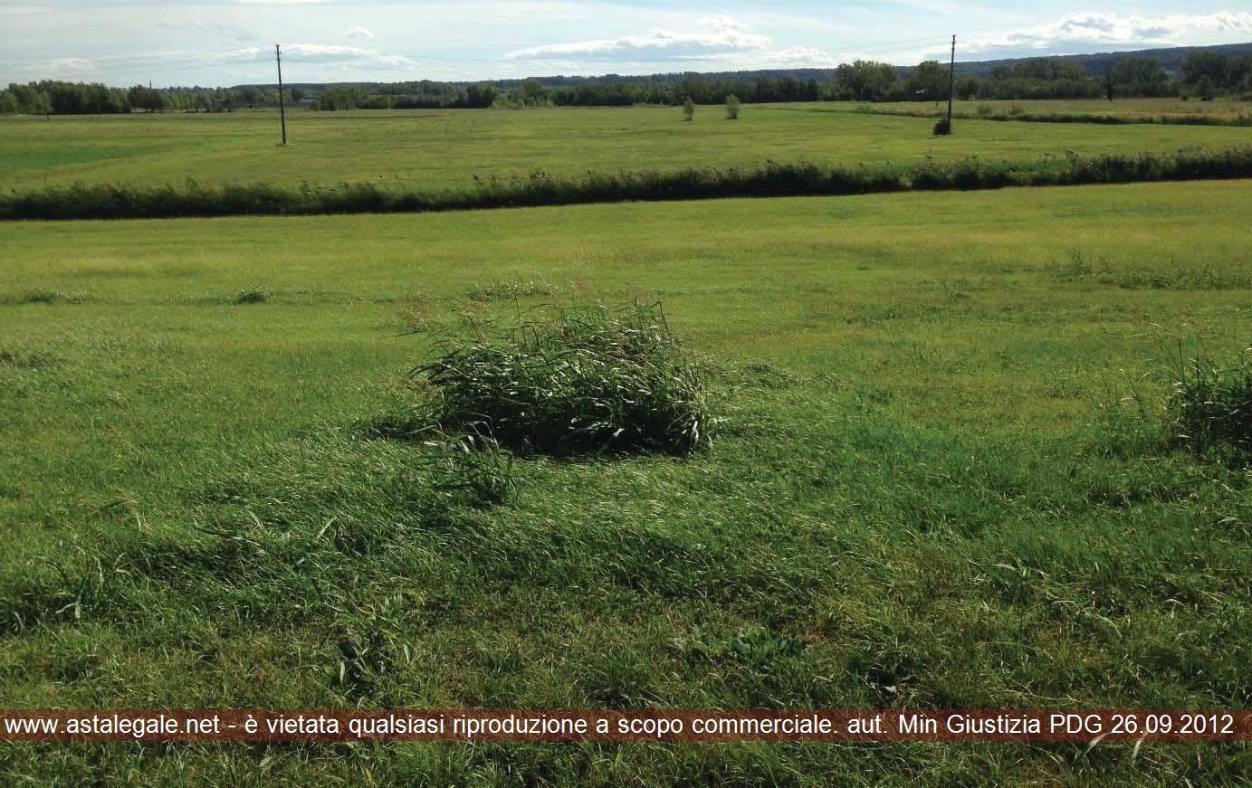 Medesano (PR) Localita' Brozzoli