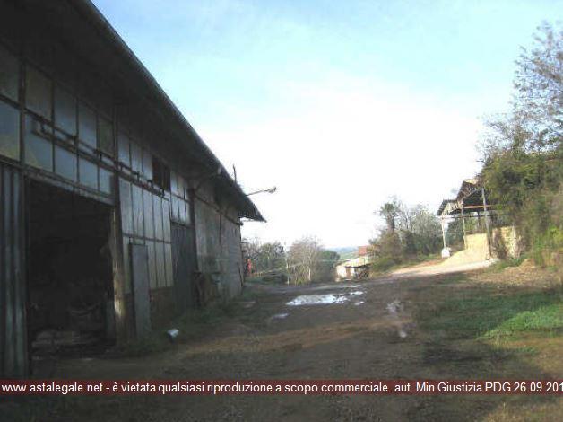 Celleno (VT) Localita' Perazzeta - Strada Teverina  KM. 13.400 SNC