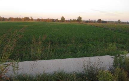 Volta Mantovana (MN) Ambito E3 - Agricolo produttivo di collina - Cave e bonifiche agricole cm