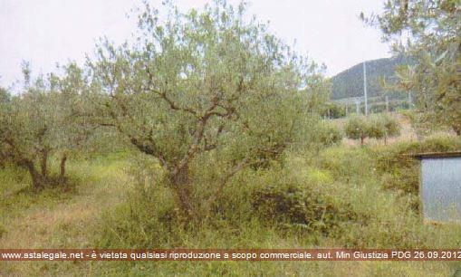 Assisi (PG) Localita' Viole