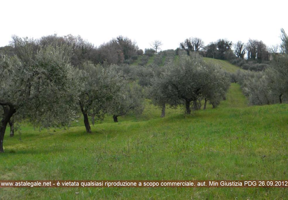 Bucchianico (CH) Contrada Cese snc