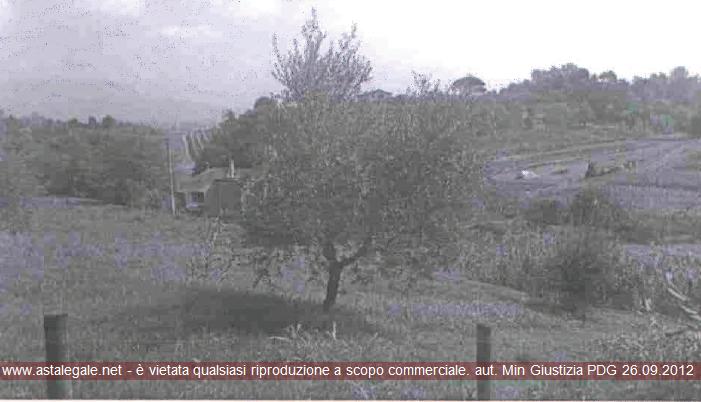Anteprima Foto principale. Riferimento 1910124
