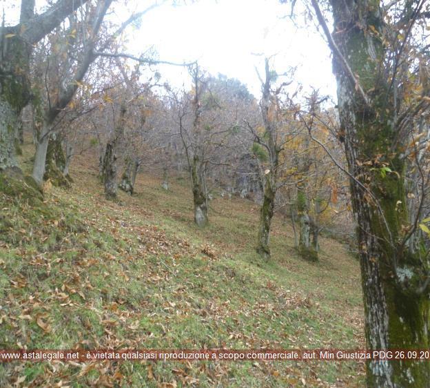 Solofra (AV) Localita' Postellone