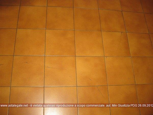 Anteprima Foto. Riferimento 3583664