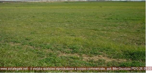 Borgofranco Sul Po (MN) Localita' Bonizzo