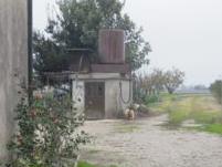 Bonavigo (VR) Frazione Orti, VIA BELFIORE  18