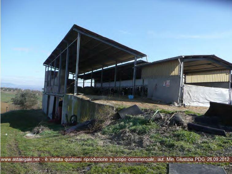 Castiglione Del Lago (PG) Localita' Porcellone di Pozzuolo