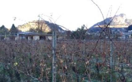 Trento (TN) Localita' Graffiano di Povo