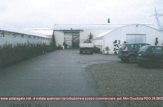 Firenze (FI) Localita' Badia a Settimo - Via del Pellicino